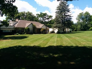 large lawn of property in Kitchener on Edgehill Drive