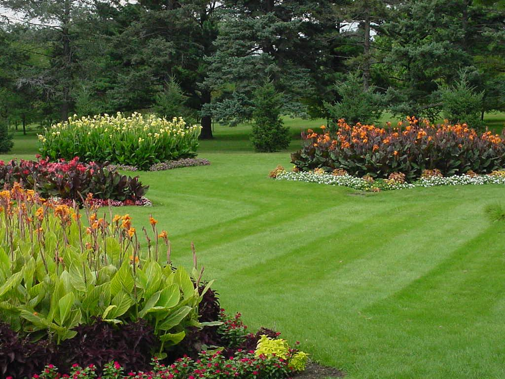 lawn and garden of property in kitchener