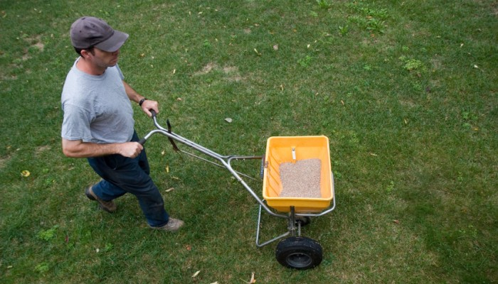 man applying fertilizer to lawn using yellow spreader cart