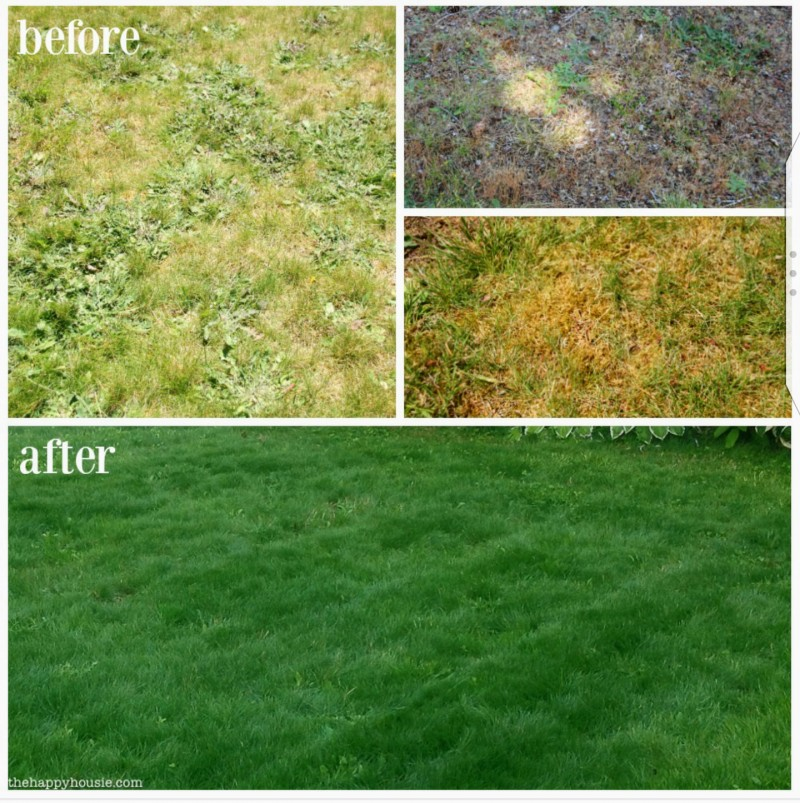 maple-leaf-maintenance-kitchener-before-and-after-1