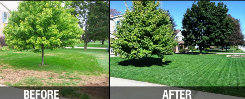 maple-leaf-maintenance-kitchener-before-and-after-4